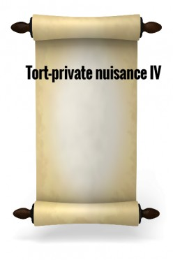 Tort-private nuisance IV