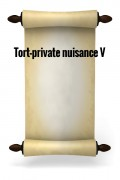 Tort-Private nuisance V