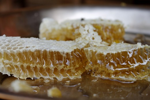 Honey in the comb.