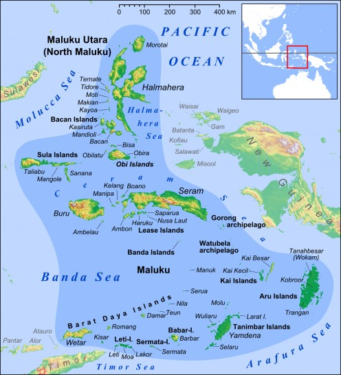 Ambon Island is a very small island located in the section called Maluku Islands. Ambon is almost in the center of the map.