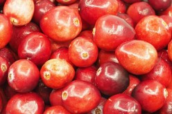 The Remarkable Benefits of The Acerola Berry