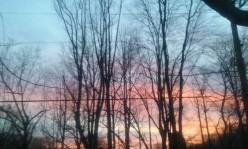 Poem: Looking Up / Sunrise
