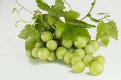 Grapes: The Best Anti Aging Secret