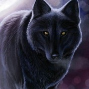 caeyostrauss profile image
