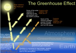 Greenhouse Effect and Major Greenhouse Gases