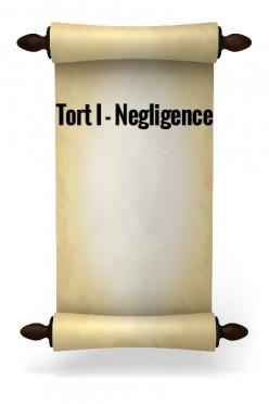Tort I - Negligence