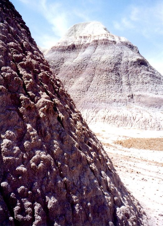 Walking amidst the sand dunes in the Badlands of the Petrified Forest National Park.