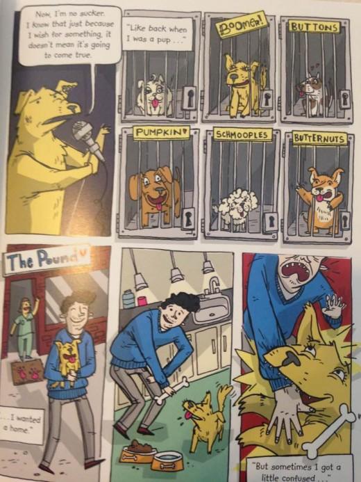 Cartoon-like illustrations tell the story of shelter life