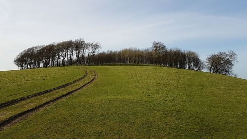 Chanctonbury Ring is a prehistoric hill fort on Chanctonbury Hill, on the South Downs