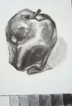 Value Scale in Charcoal