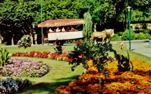 Horse drawn carriage going through Beacon Hill Park