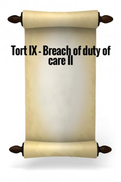 Tort X - Breach of duty of care II