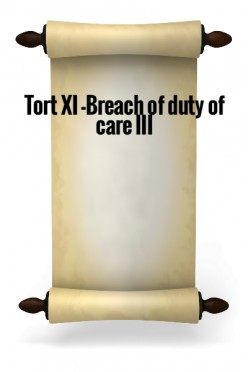 Tort XI - Breach of duty of care III