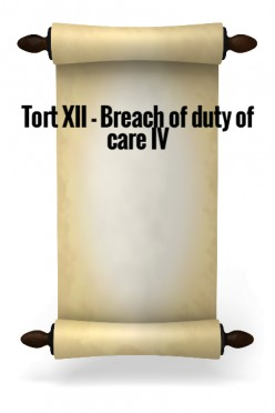 Tort XII - Breach of Duty of Care IV