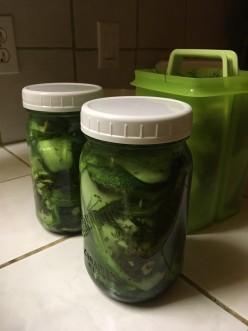 Favourite Fridge Pickles