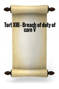 Tort XIII - Breach of duty of care V