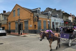 Louisiana Day Trips: New Orleans and Beyond