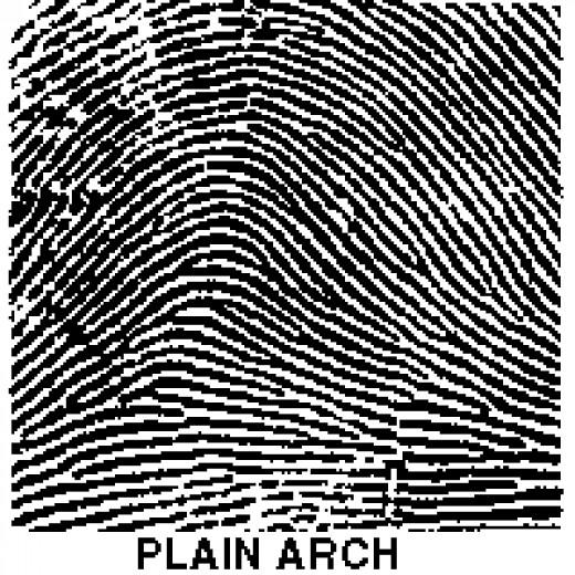 plain arch