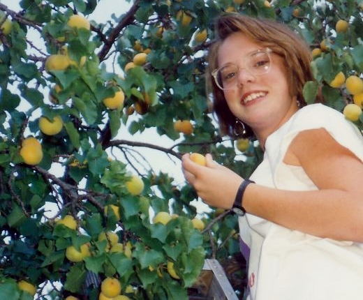 My niece picking apricots in Fruita, Utah.