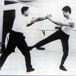 Embracing and Challenging the Gospel Truth: My Understanding of Bruce Lee and Jeet Kun Do