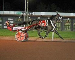 The Little Brown Jug is one of Harness Racing's Biggest Events