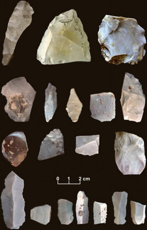 Buttermilk Creek artifacts