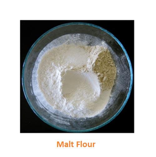 Good quality Malt Flour