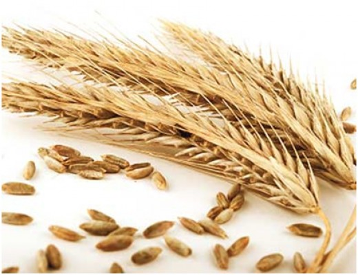 Whole Grains help prevent diabetes