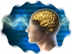 If Consciousness Is Not in the Brain, Will It Survive Our Death?