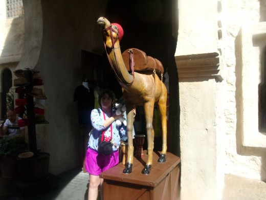 Rose in front of a life size camel
