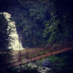 Unplanned Trips, Rains and Coffee: Holidaying at Coorg