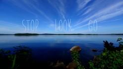 Stop, Look, Go!