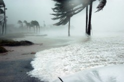 How to Prepare Your Family for a Weather Disaster
