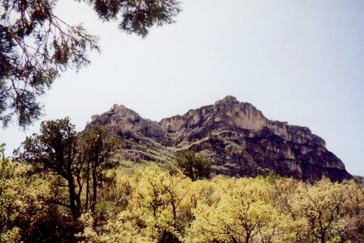 Scenery on our hike into the Guadalupe Mountains - specifically McKittrick Canyon.