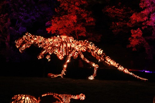 """A dinosaur made completely of pumpkins at the """"Great Jack-o'-Lantern Blaze"""" in Sleepy Hollow."""