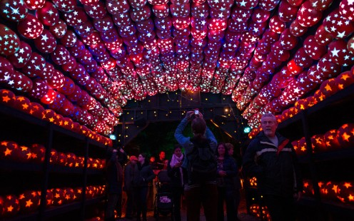 """The pumpkin planetarium at the """"Great Jack-o'-Lantern Blaze"""" in Sleepy Hollow is a popular end-of-tour sight at this spectacular walk-through event."""