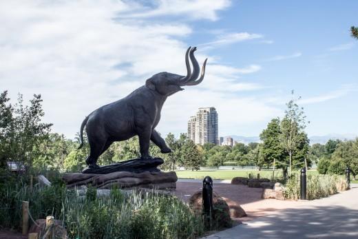 Denver Museum of Outdoor Arts