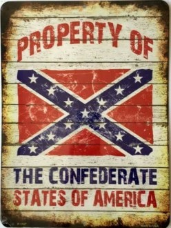 The Fury and Pride of Southern Heritage and the Confederacy