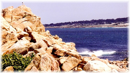 Pacific views along 17 Mile Drive