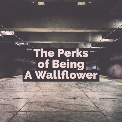 """The Perks of Being a Wallflower"""