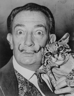 Why is Salvador Dali's Art Expensive?