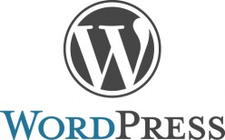 What Is Wordpress And How To Use It