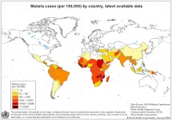 Malaria - a Biological Problem