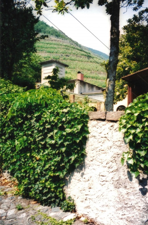 Rocky hillsides at the Triacca - LaGatta Estate.