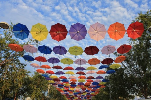 The red and blue umbrellas. Which is your colour?