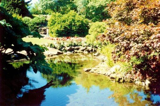 Beautiful Queen Elizabeth Park in Vancouver, Canada