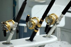 How to Understand and Use Different Fishing Reels