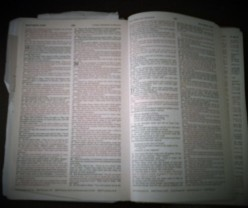 What the Bible Says About Itself