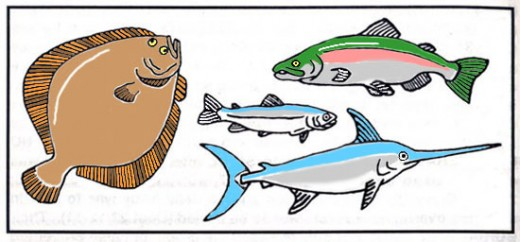 Clean seafoods