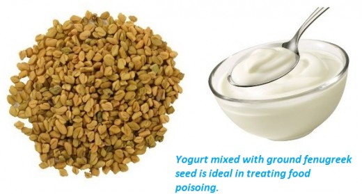 Yogurt mixed with ground fenugreek seeds is a good concoction when treating food poisoning.